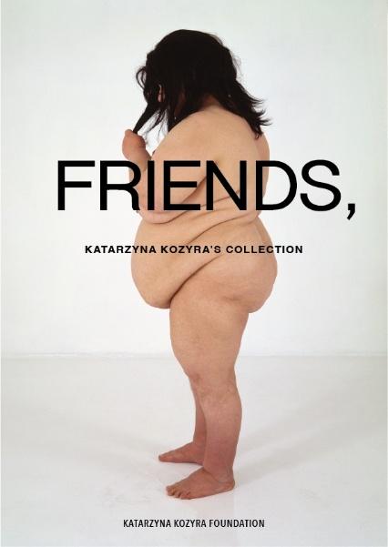 FRIENDS, program  wsparcia fundacji